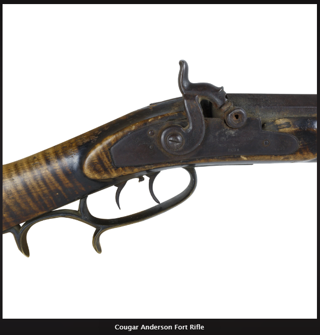 Cougar Anderson Rifle 1.2.png