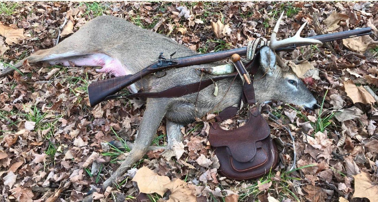 Deer Down.jpg