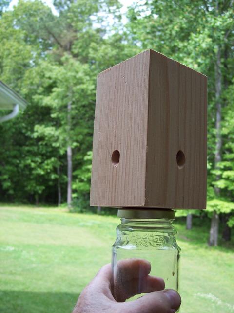 new bee trap.JPG