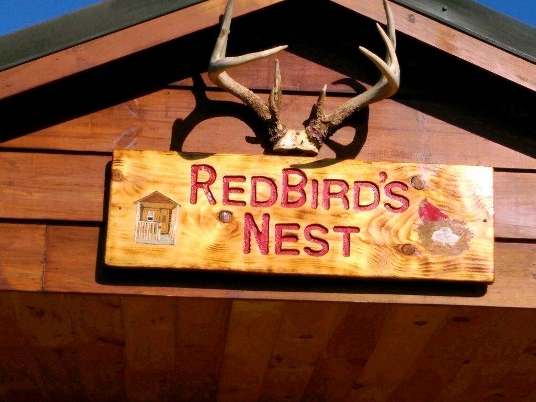 RedBirds nest 2.jpg